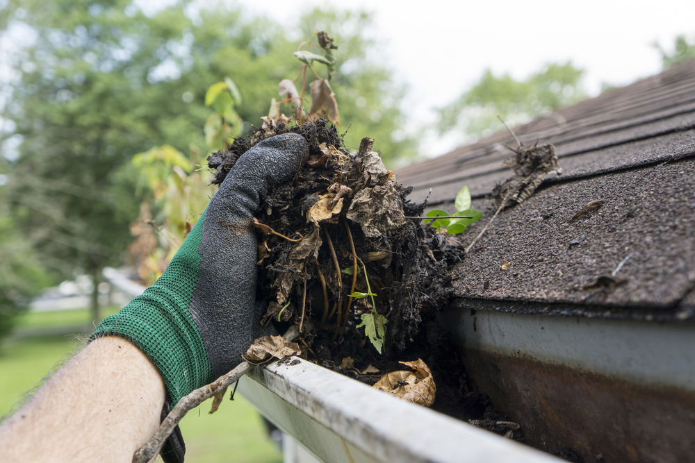 Cleaning Leaky Gutters from Roof Damage